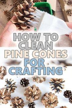 Christmas Pine Cones, Easy Christmas Crafts, Fall Crafts, Pine Cone Crafts For Kids, Pinecone Crafts Kids, Diy Crafts For Home Decor, Diy Craft Projects, Pine Cone Art, Pine Cone Wreath