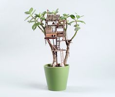 Artist Jedediah Corwyn Voltz constructs miniature handcrafted tree houses around common houseplants, bonsais, succulents and cacti. Potted Plants, Cactus Plants, Indoor Plants, Potted Succulents, Small Plants, Tree Hut, Miniature Trees, Fairy Houses, Tree Houses