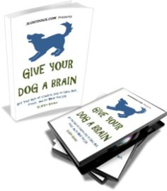The Give Your Dog a Brain kit comes with an ebook and online videos