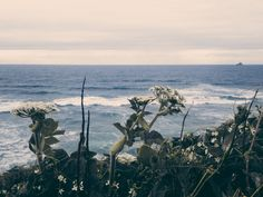 leaberphotos:   Eternal silence of the sea, I'm... : expressions-of-nature