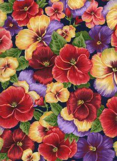 Pansies.... Beautiful!!