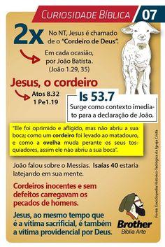 Jesus - O Cordeiro - 2