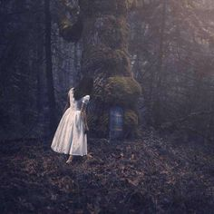 Photographer: Nicole Burton