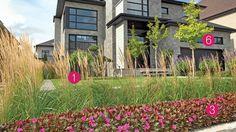 Des aménagements de façades inspirants | Les idées de ma maison Facade, Beautiful Homes, House Plans, Yard, Exterior, Contemporary, Mansions, Landscape, Gardens