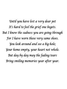 In memory of my cat, Buddy. And for all those who have lost a pet.