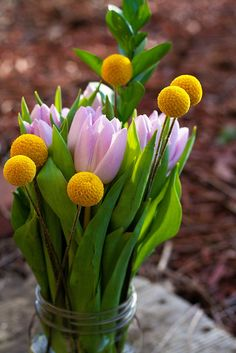 spring colors #flowers #tulips my inspiration for my spring style are spring colors!