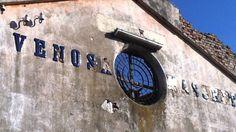 Il #vino del Sud - Southern Italian #wine. Viaggio in #bici alla scoperta dei vini e dei vitigni del #Sud Italia - #Bike trip to discover the wines and grapes of Southern #Italy