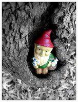 Tree Gnome by BiteTheBullet