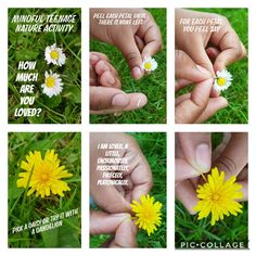 Want to find out how much you are loved?  Then all you need is a pair of feet to take you to a green flowery patch and a good pair of investigative eyes to find the perfect daisy or dandelion flower. Once you have acquired the marvellous treasure, you are in for a treat:  just follow the steps below laid out in the photo collage. Have fun! All You Need Is, Mindfulness For Kids, Dandelion Flower, Young People, How To Find Out, Daisy, Collage, Yoga, Activities