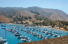 Catalina Island Day Trip things to do for a day. Enjjoy a scenic city tour, Stroll along the palm-lined streets, or ride a glass bottom boat. Two Harbors Catalina, Santa Catalina Island, Glass Bottom Boat, Channel Islands, Weekends Away, Day Trip, Sailing, Places To Visit, Traveling