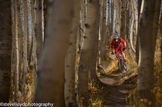 Eric porter shredding the crest trail during fall.