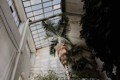 Giardino Dei Semplici Firenze. Greenhouse Wedding Inspiration in Florence, Tuscany, Italy