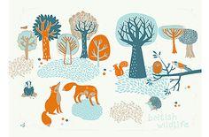 british wildlife - jane anderson
