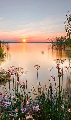 Lake Chudskoe (Russian part of the lake) [aka Lake Peipus, Estonian part] shared by Russia and Estonia