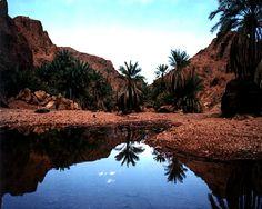 Saudi Arabia 013.jpg (720×576)