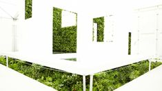 Amazing Green-Walled Japanese Bathroom Answers Nature's Call