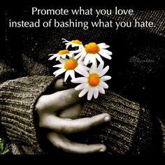 Love Not Bash