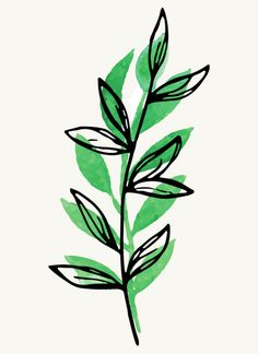 Plant Painting, Plant Art, Leaf Drawing, Tree Drawing Simple, Artwork Display, Colorful Wall Art, Plant Illustration, Leaf Art, Poster Making