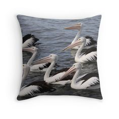 Lots of Pelicans Original Art, Cushions, It Is Finished, Throw Pillows, The Originals, Prints, Stuff To Buy, Photography, Color