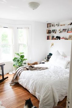 White wall paint, new carpet, queen bed frame, white quilt cover, green pillows, plants, throw rug, bedside table, surfboard, guitar, records, mirrors, over bed desk, under bed storage because no wardrobe, get rid of desk