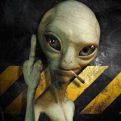 """Fuck society! """"Numa sociedade sustentada pela mentira qualquer expressão de verdade é vista como loucura."""" - Emma Goldman .  @ipde.ch - Instituto para Desempenho e Expansão da Consciência Humana Inspiração diária Evolução humana Expansão da consciência Visão psicodélica ----------- . . . #expansão #consciência #humana #psychedelics #mente #nature #pessoas #revolução #psicodélico #sabedoria #refletindo #liberdade #psy #pensamentos #frasedodia #mudança #instarung #pensenisso #lsd #mdma…"""