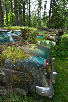 Reclaimed by mother nature. Abandoned Cars, Abandoned Places, Abandoned Vehicles, Vintage Cars, Antique Cars, Rust In Peace, Rusty Cars, Fantasy Landscape, Barn Finds