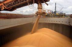El crecimiento fue en los primeros nueve meses del año respecto de igual período anterior. El volumen de exportaciones agroindustriales se incrementó 25% en los primeros nueve meses del año respecto de igual período anterior, informó el Ministerio de