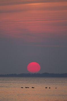Sunset in West Jutland, Denmark (by richard.mcmanus)