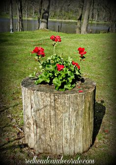 DIY Stump Planter | Redhead Can DecorateRedhead Can Decorate