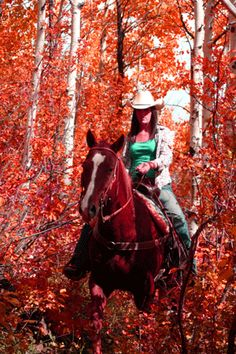 Fall horseback riding. When everyone else is preparing for football games...I am doing this