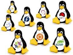 #Linux #distrition #ubuntu #mandrive  #suse #pickoftheday #ingegneria #software #operative #operativesystems #free #gpl #pinguino #pickoftheday #followforfollow #follow4follow #share4share #share #s4s #f4f #l4l #like4like #suse #Fedora #debian #softwareengineering by shannon.23