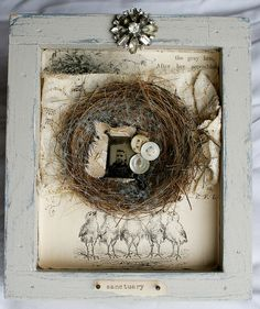 Sweet bird nest collage