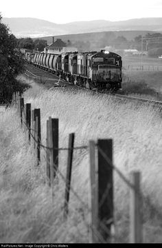 RailPictures.Net Photo: Z2113 Pacific National Tasmania PNT Z Class at Ross, Australia by Chris Walters