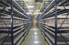 Hybrid Rack/Shelving Systems Warehouse Pallet Racking, Shelving Systems, Blinds, Shades Blinds, Blind, Draping, Exterior Shutters, Shutters, Window Blinds & Shades