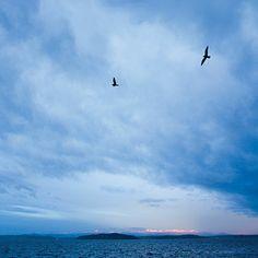 Weather Watch Park Seattle 4035 Beach Dr SW 34 min from Eastside