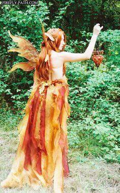 Autumn Fairy » Firefly Path