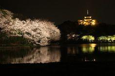 Night view of Sankei-en