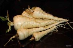 parsnip tips | the garden guys