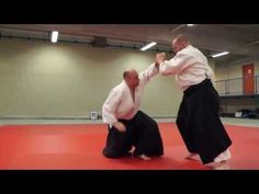 Aikido: Stéphane Goffin - 10th Seminar in Vienna