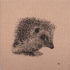 Owl, Bird, Illustration, Animals, Collection, Animales, Animaux, Birds, Illustrations