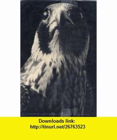 The Peregrine J.A. Baker ,   ,  , ASIN: B0057RI1G6 , tutorials , pdf , ebook , torrent , downloads , rapidshare , filesonic , hotfile , megaupload , fileserve