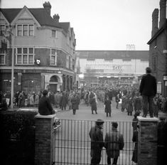 Tottenham v Benfica European Cup Semi Final 1962: When Spurs missed out on a place in the final - Mirror Online