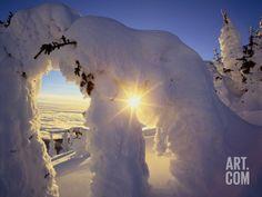 Sunset Thru the Snowghosts, Big Mountain, Whitefish, Montana, USA Photographic Print by Chuck Haney at Art.com
