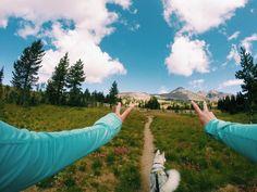 Прогулки с песиком на GoPro ● Мы занимаемся GoPro в Беларуси. Посетите наш сайт: gopro-shop.by ● #gopro #behero #extreme #outdoors #summer #ride #belarus #goprobelarus ●