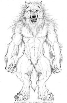 werewolf drawings - Google Search