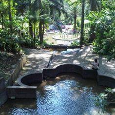"""3. Parque Los Tecajetes  Manuel Avila Camacho, Xalapa, Veracruz  """"De estilo japonés, refleja la belleza de nuestra fauna y flora local"""""""