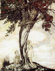 The Hawthorn Tree, 1922, Arthur Rackham. English Illustrator (1867-1939) by wteresa