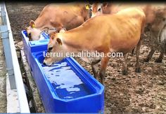 Premier Large Heated Water Trough For Cattle,Horse - Buy Drinking ...