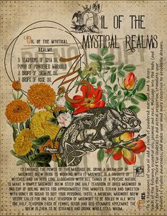 Oil of the Mystical Realms – Magie und Hexerei – Home Recipe Magic Herbs, Herbal Magic, Grimoire Book, Wiccan Spell Book, Witchcraft For Beginners, Eclectic Witch, Magick Spells, Book Of Shadows, Mystic