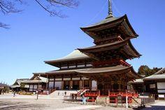 Manassanan Travel: โปรแกรมทัวร์ญี่ปุ่น โตเกียว ฟูจิ และพิงค์มอส